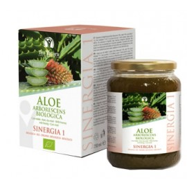 ALOE SINERGIA 1 750ML