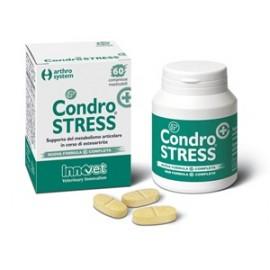 CONDROSTRESS +60CPR MASTIC