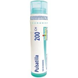 PULSATILLA 200CH GL